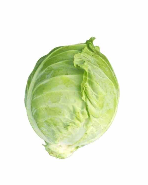 Cabbage-ApnaSabji