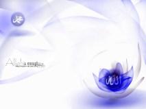 aie-white