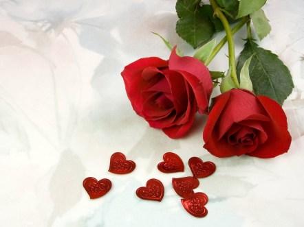 The-best-top-desktop-roses-wallpapers-hd-rose-wallpaper-1-two-red-roses