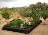 Vegetable garden phoenix, wells appel landscape architects