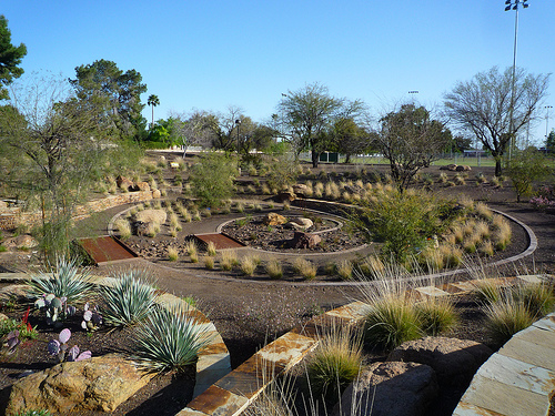 desert landscapes xeriscape
