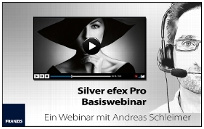 Basiswebinar, Grafik von www.pixxsel.de, Web-Video