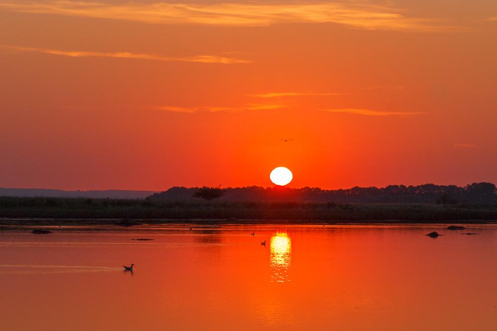 Sonnenaufgang auf der Insel Poel, Mecklenburg-Vorpommern
