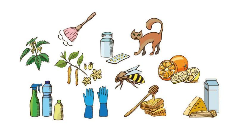 Allergie - verschiedene Auslöser