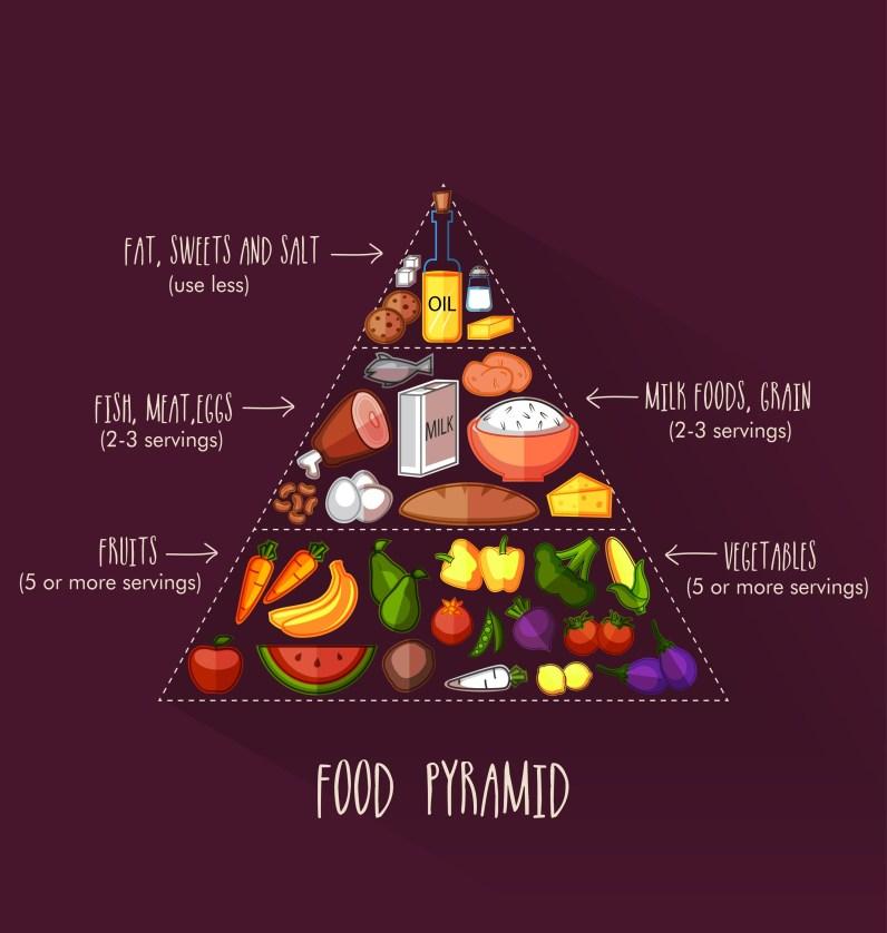 Ernährungspyramide. Mangelerscheinung
