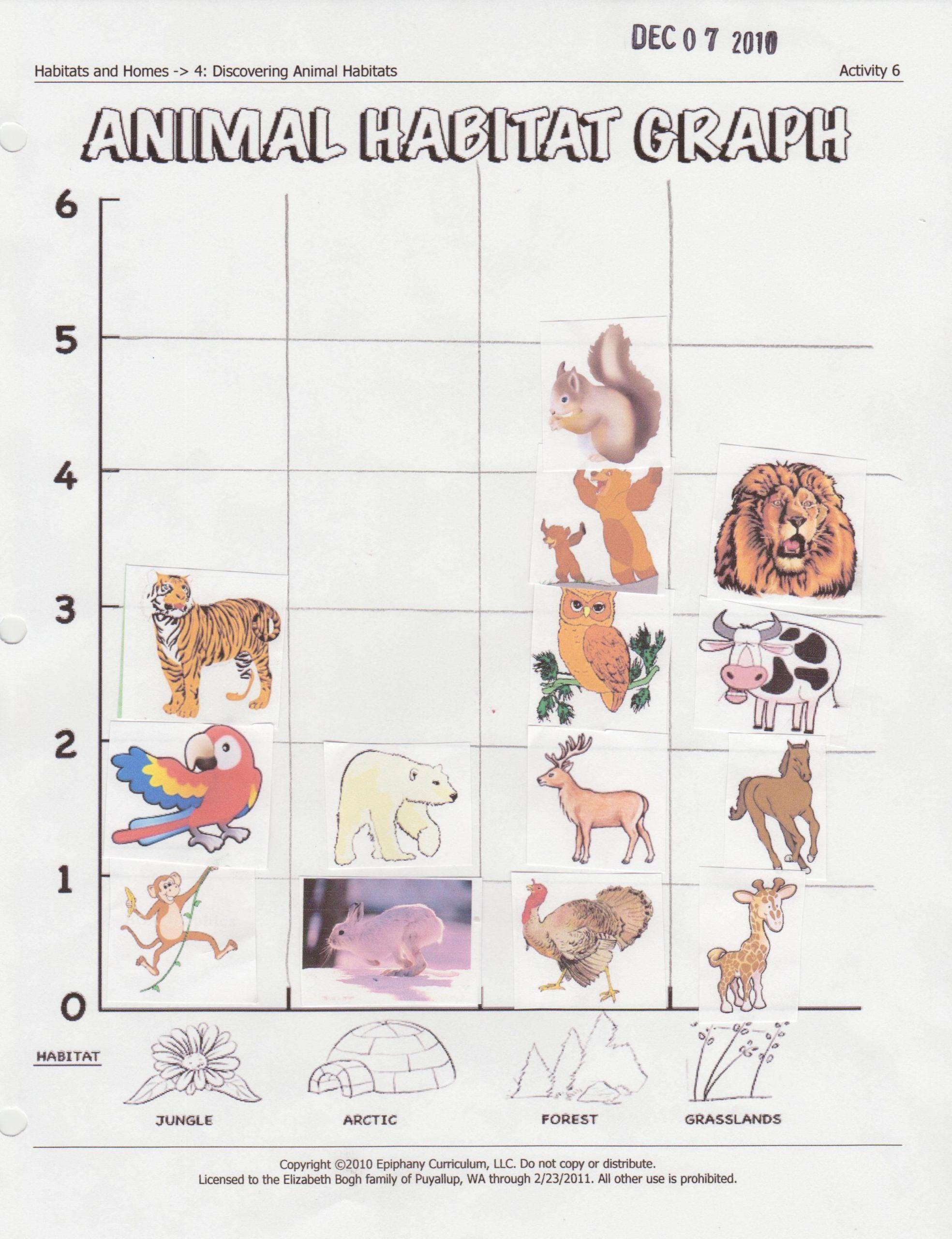 5 Animals Worksheets First Grade