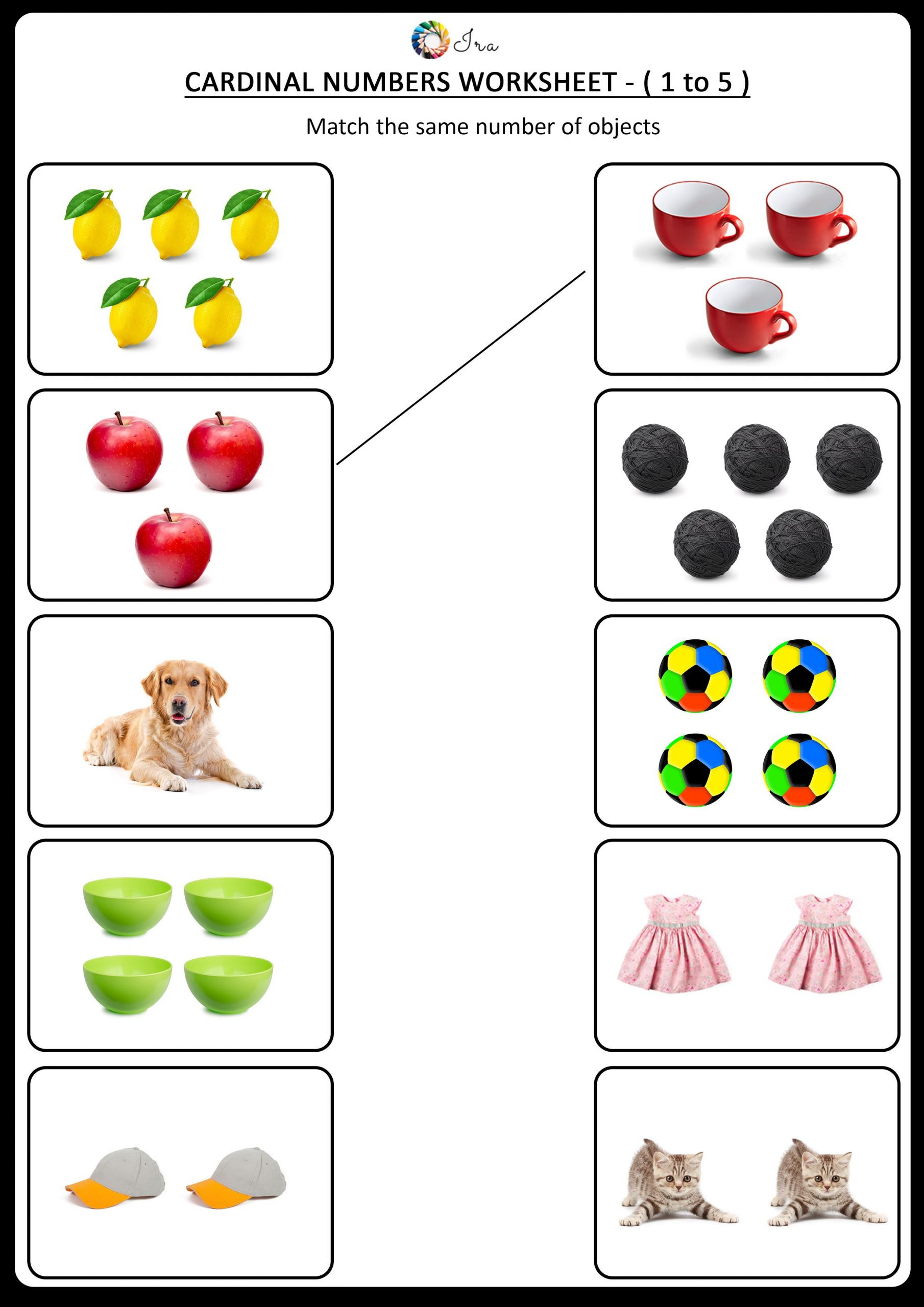 5 Animals Worksheets Free