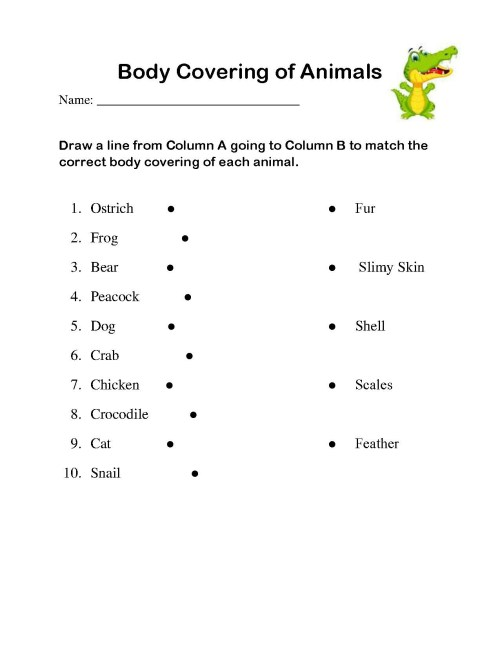 small resolution of 5 Farm Animals Display Eyfs - apocalomegaproductions.com