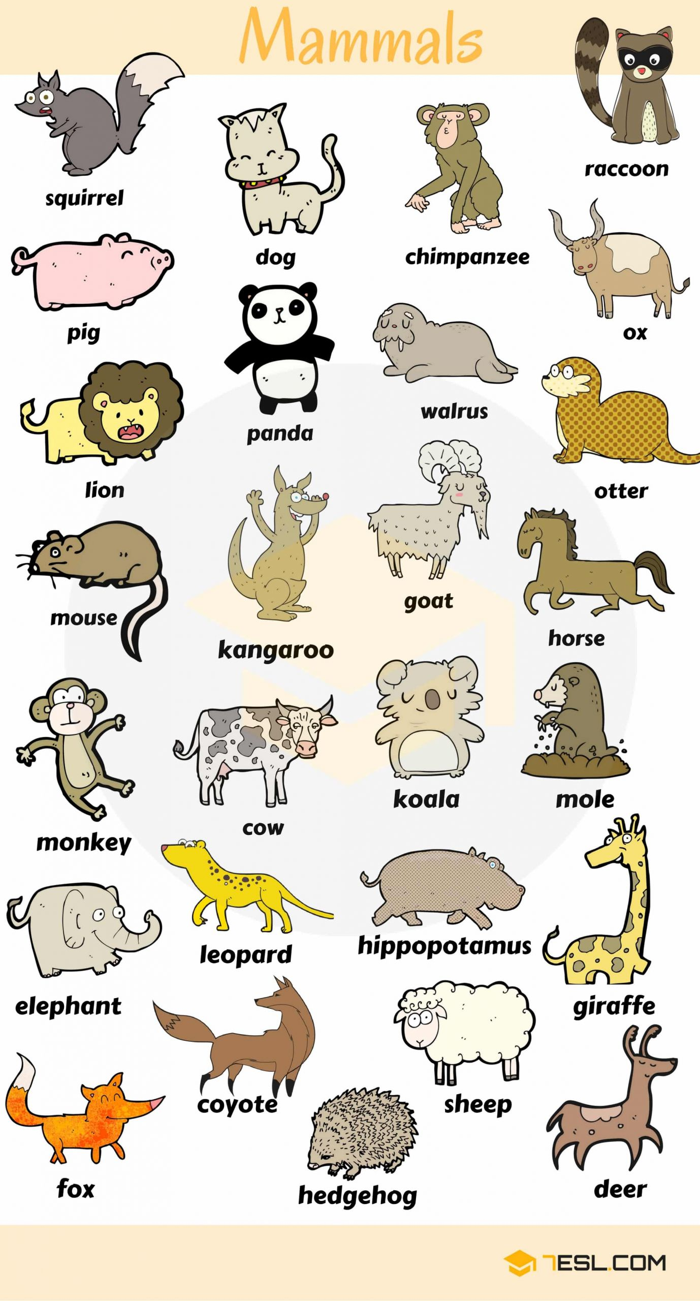5 Farm Animals Vocabulary Worksheets