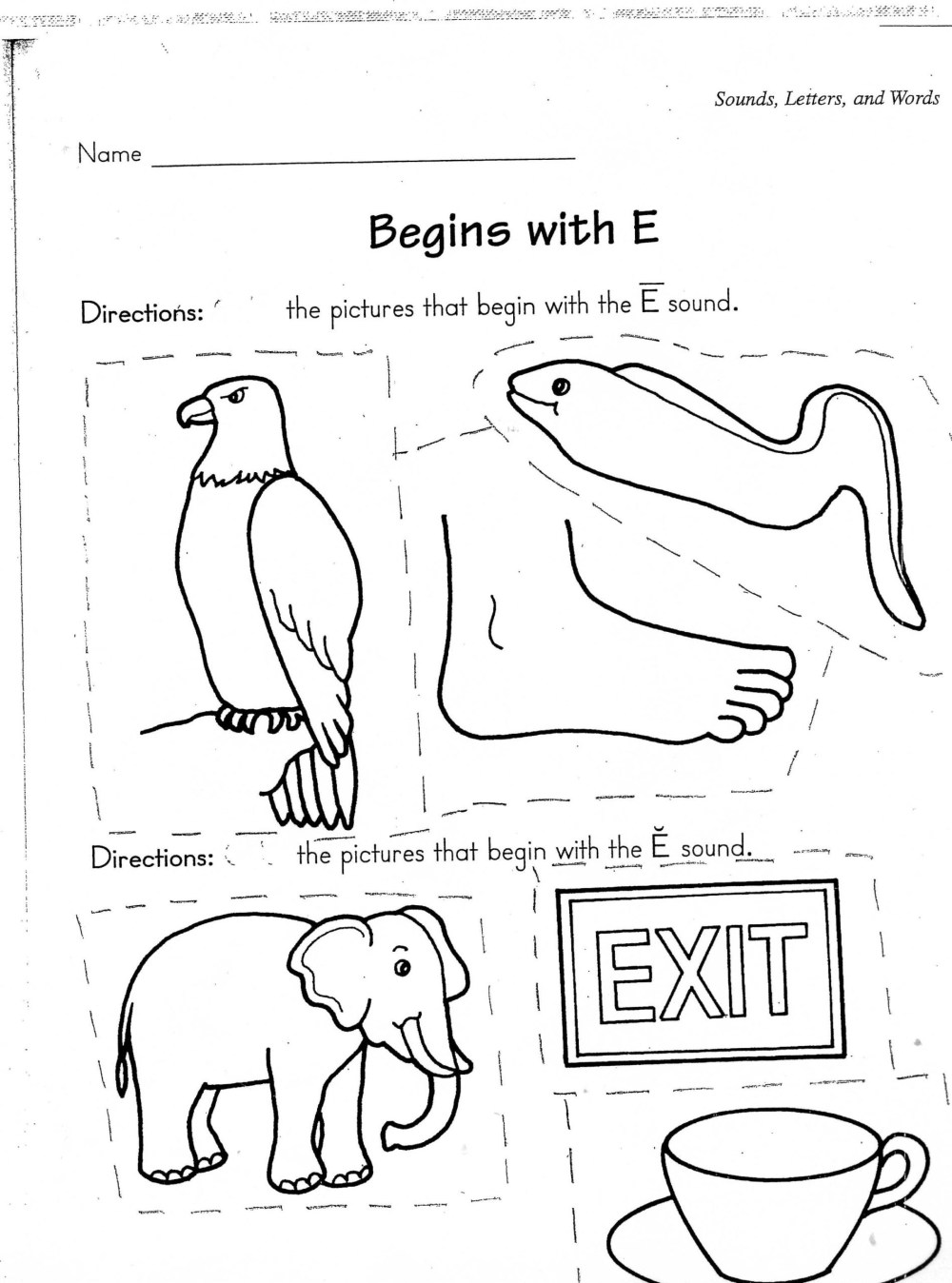 medium resolution of 6 Farm Animals Worksheets Student - apocalomegaproductions.com