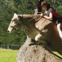 Λίλακ: η αγελάδα που... Νιώθει άλογο!