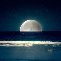 Ο έρωτας της θάλασσας για το φεγγάρι