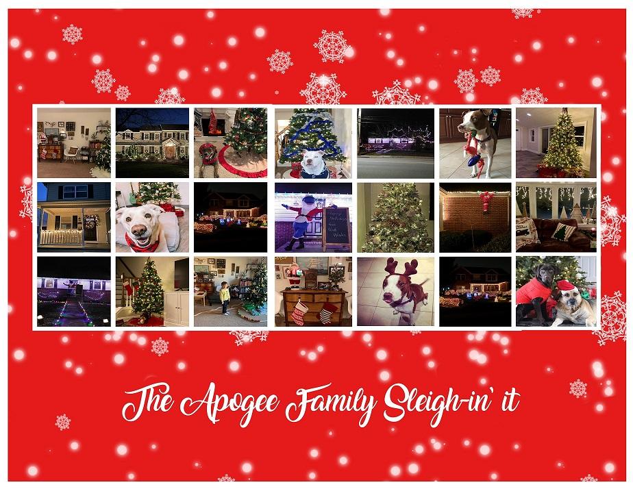 Apogee Holiday Decor Collage 2020