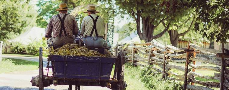 EU-Milliarden für Agrar-Konzerne, kleine Bauern gehen leer aus – Kontrast.at