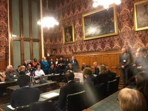 Arguing for a Norway Plus Brexit from the perspective of a committed Corbyn supporter – Audio of address at the House of Commons, 29 JAN 2018