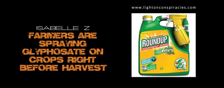 Explosive new analysis reveals that farmers are spraying glyphosate on crops | Light On Conspiracies – Revealing the Agenda