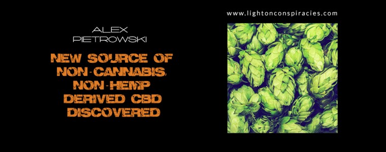 New Source of Non-Cannabis, Non-Hemp Derived CBD Discovered | Light On Conspiracies – Revealing the Agenda