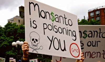 Is Capitalism Killing Us? Monsanto's Glyphosate | Global Research – Centre for Research on Globalization