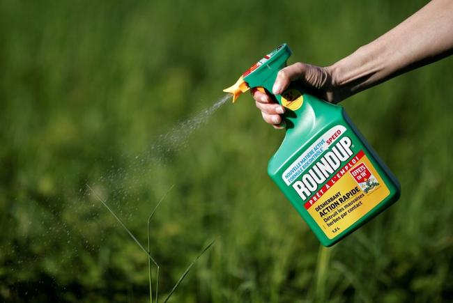 "Bayer Beware: Lawyers Claim To Have ""Explosive"" Monsanto Documents"