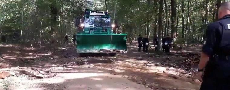 Tod im Hambacher Forst führt zu Räumungsstopp