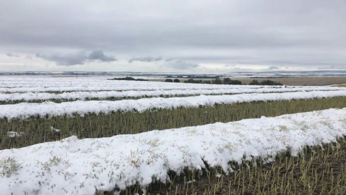 September Breaks all Records for Snow Fall Because Obviously Canadians Don't Pay Enough in Global Warming Taxes to Make a Difference | Armstrong Economics