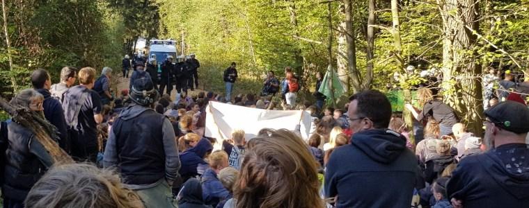Hambacher Forst: Barrikaden und vertiefte Gräben