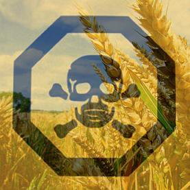 seeds-of-destruction-the-diabolical-world-of-genetic-manipulation-8211-global-research