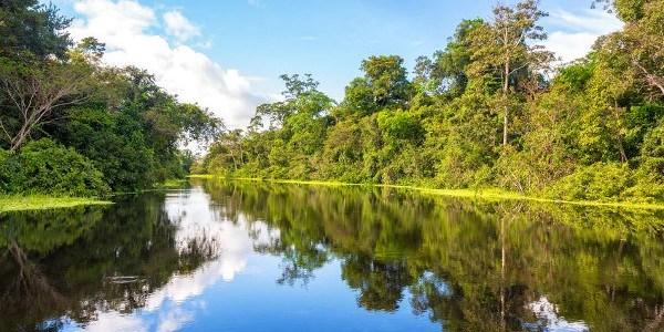 het-amazonegebied-en-de-nieuwe-conquistadores-8211-de-lange-mars-plus