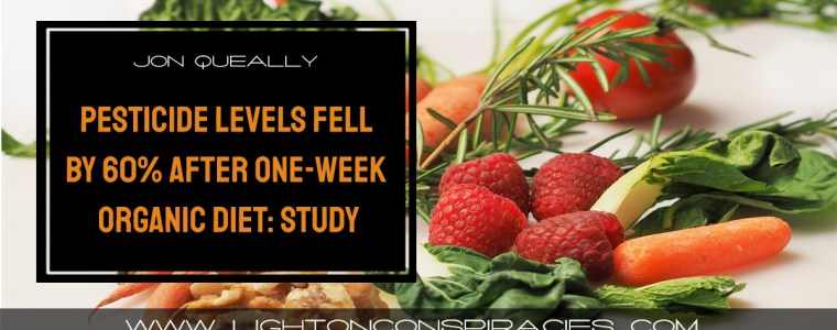 pesticide-levels-in-families-dropped-by-60-after-one-week-organic-diet-study-light-on-conspiracies-8211-revealing-the-agenda