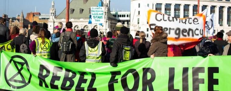 klima-und-artensterben-krisenstimmung-greift-um-sich