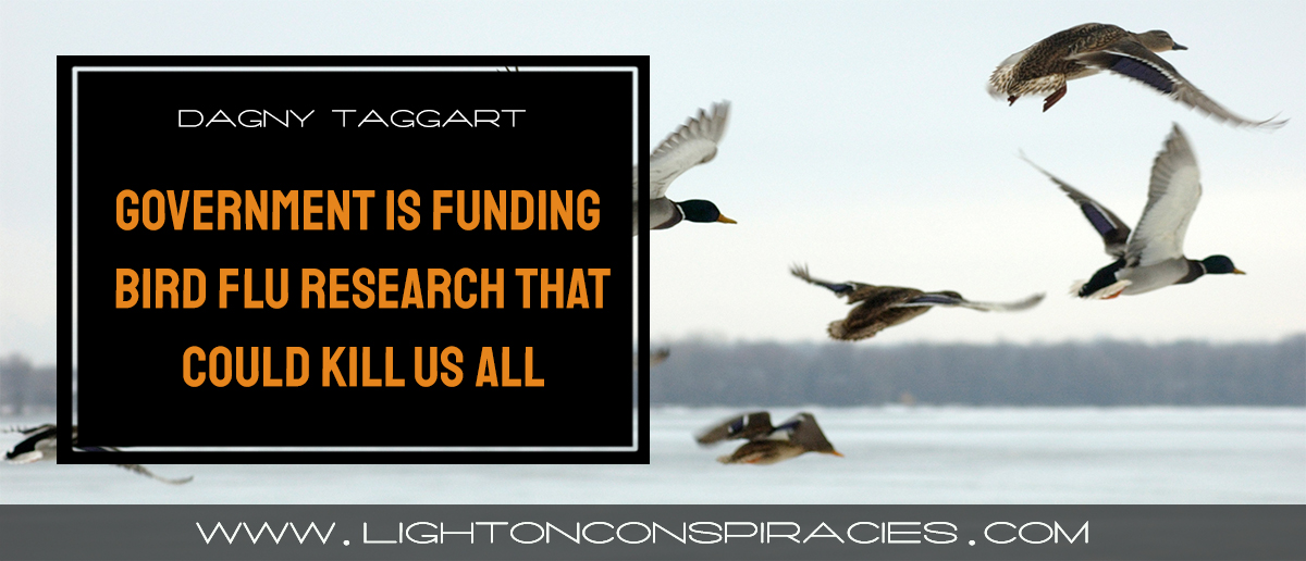 our-own-government-is-quietly-funding-the-bird-flu-research-that-could-end-up-killing-us-all-light-on-conspiracies-8211-revealing-the-agenda