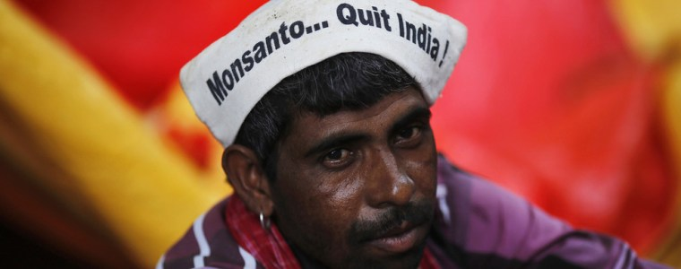 seeds-of-conflict:-how-us-companies-became-the-enemies-of-traditional-indian-agriculture