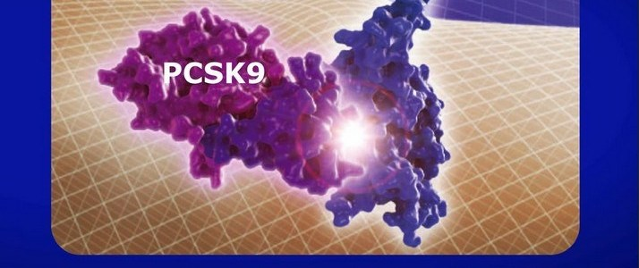 pcsk9-remmers-en-de-idiotie-van-cholesterol/statines.!