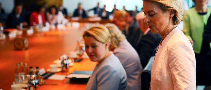 der-untergang-der-europaischen-nationalstaaten:-von-der-leyen-wird-von-der-leine-gelassen