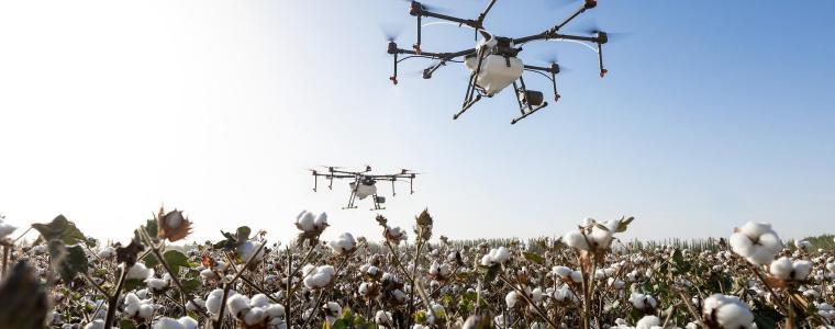 bits-und-baume:-wie-sich-digitalisierung-auf-die-weltweite-landwirtschaft-auswirkt
