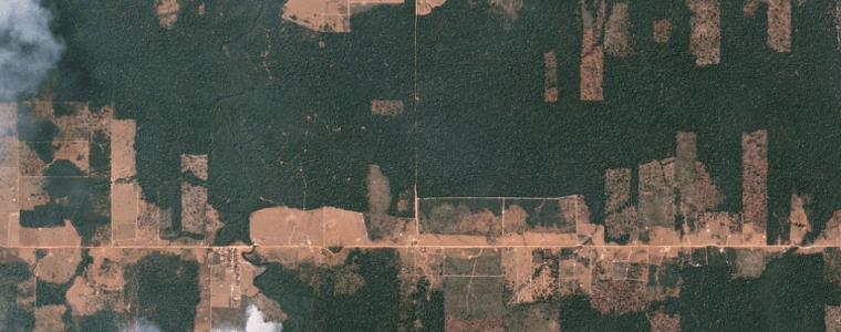 future-of-amazon-deforestation-data-in-doubt-as-research-head-sacked-by-bolsonaro-–-global-research