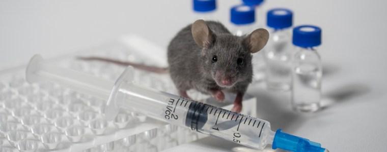 vaccins-en-retrovirussen:-een-klokkenluider-onthult-wat-de-regering-verbergt-–-stichting-vaccin-vrij