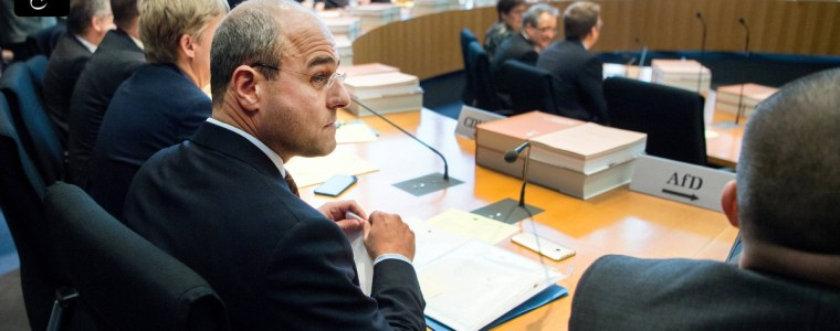 schutz-der-privatsphare:-afd-will-bargeld-im-grundgesetz-verankern