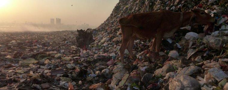 indien:-david-schlagt-goliath