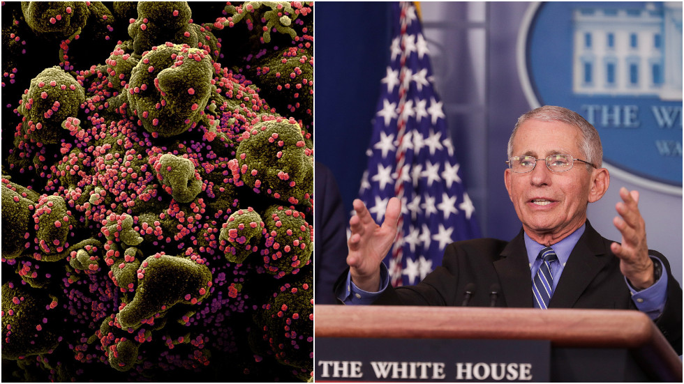 'covid-19-could-be-seasonal':-fauci-warns-coronavirus-is-likely-to-return-in-'cycles',-stresses-need-for-vaccine