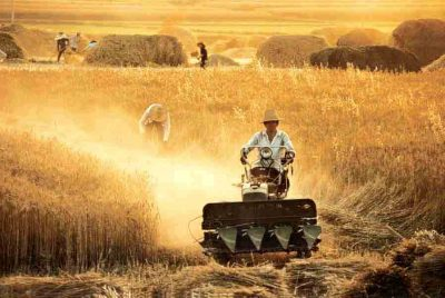 neoliberal-death-knell-for-indian-agriculture-|-asia-pacific-research