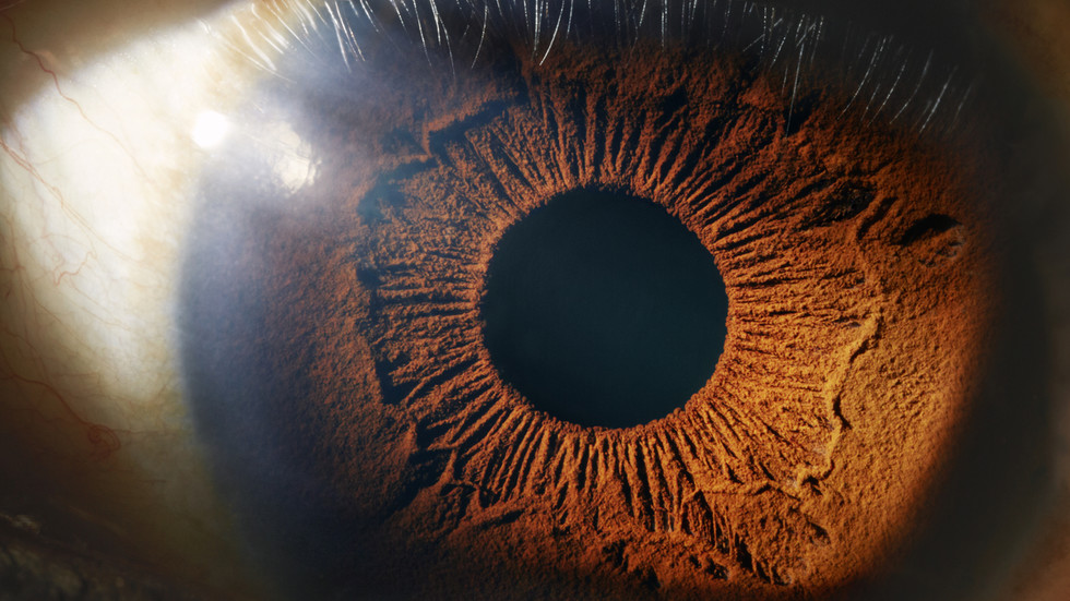 'impossible'-breakthrough-sees-scientists-successfully-regrow-optic-nerve-cells