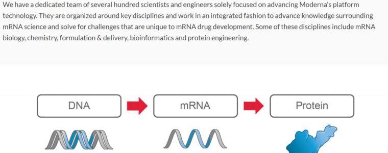 mrna-maakt-van-uw-lichaam-een-computer-met-besturingssysteem-vergelijkbaar-met-windows,-android-en-ios