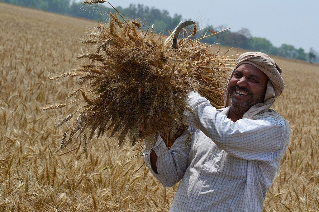 """farmers'-protest-in-india:-price-of-failure-will-be-immense.-""""the-plan-to-radically-restructure-agrifood""""-–-global-research"""