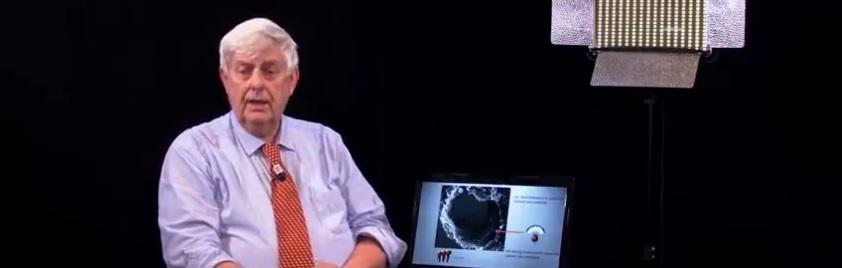 hoogleraar-capel:-'ivermectine-net-zo'n-doorbraak-als-penicilline,-maar-het-mag-niet-gebruikt-worden'