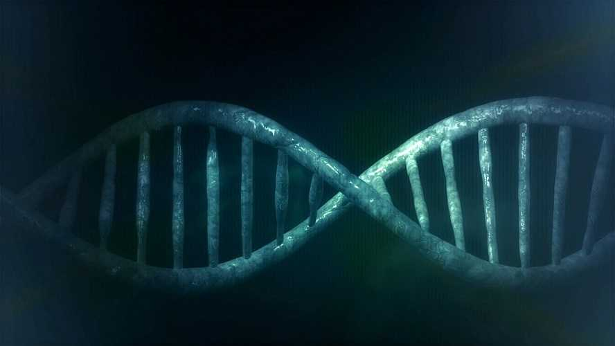 hooggerechtshof:-pfizer,-moderna-ea.-mogen-je-genen-bezitten-als-je-geinjecteerd-bent-met-hun-lab-gemaakte-mrna-–-frontnieuws