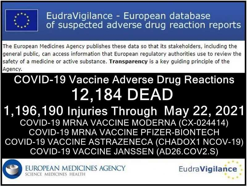 inmiddels-12184-doden-en-1196.190-gewonden-gemeld:-europese-database-van-bijwerkingen-van-covid-19-'vaccins'-–-frontnieuws