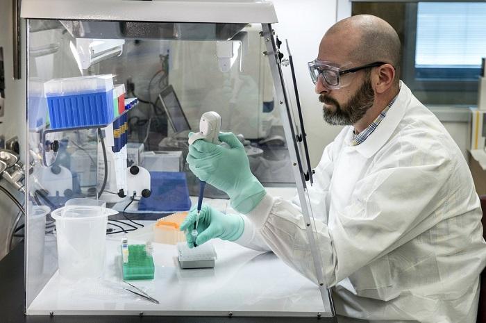 studie-toont-aan-dat-menselijke-cellen-rna-sequenties-kunnen-omzetten-in-dna-–-dissidentnl