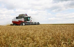 mobilising-against-the-corporate-hijack-of-agriculture-and-the-un-food-systems-summit-–-global-research