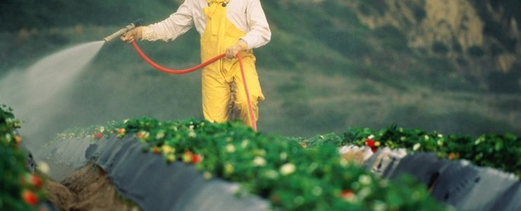 pak-de-wereldwijde-volksgezondheidscrisis-aan:-verbied-glyfosaat-nu!